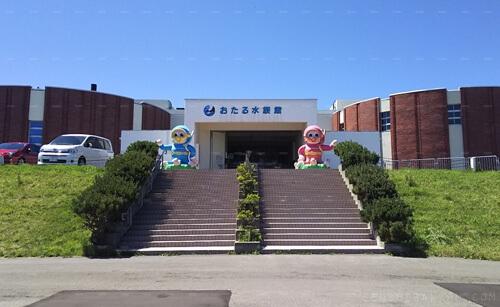 大人でも楽しいおたる水族館 小樽旅行2日目